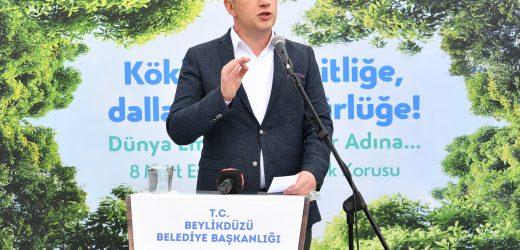 Beylikdüzü'nde 350 Yetişkin Ağaç Eşitlik Ve Özgürlük İçin Dikildi